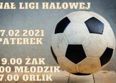 Terminy Finałów Ligi Halowej 2020/21